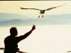 man-w-seagull-blog-vs